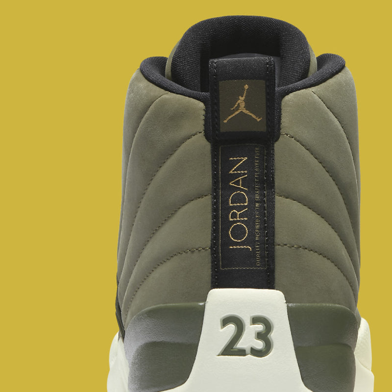 : Nike Air Jordan 12 Retro CP Class of 2003 :