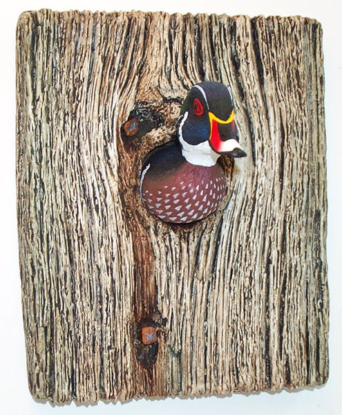 Wood Duck Demi Knot Hole