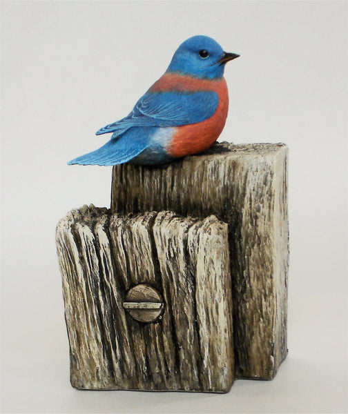 "Western Bluebird ""Post and Beam"""