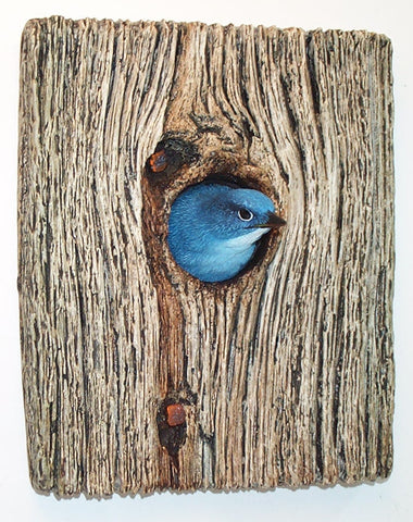 Mountain Bluebird Demi Knot Hole