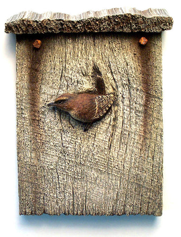 Winter Wren Rooftop