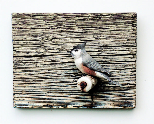 "Tufted Titmouse ""Peter's Perch"""