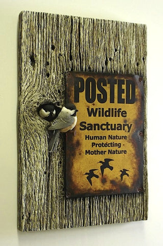 Black-capped Chickadee Sanctuary