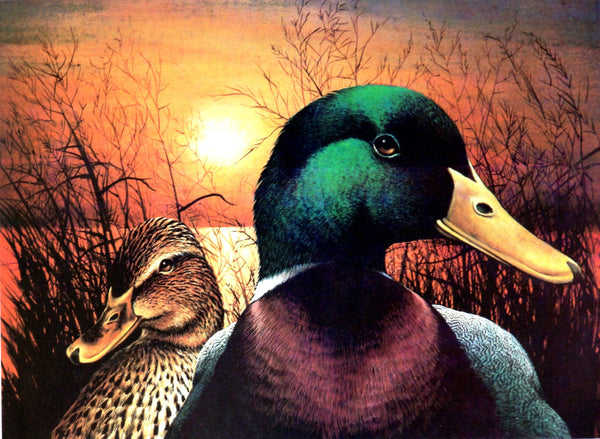 "Mallard Pair ""Native Gothic"" Print"
