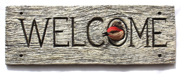 "Red-bellied Woodpecker ""Welcome"""