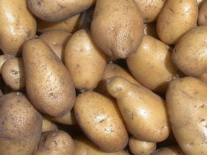 POTATOES Local Organic Nicola 1kg