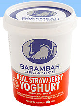 Barambah Organics Yoghurt REAL STRAWBERRY 500g