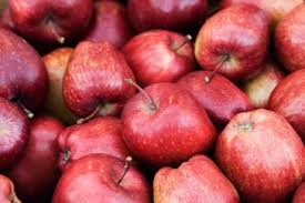 APPLES Organic Red Lunchbox small 1kg