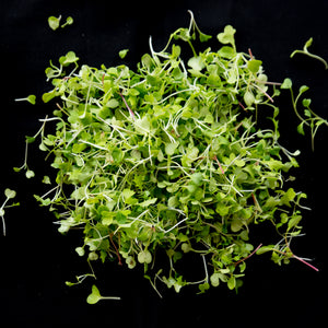 Microgreens, Mild Mannered