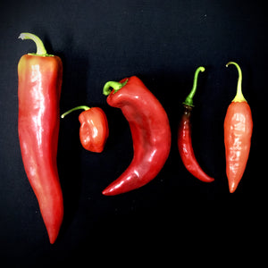 Pepper (Spicy Mix)