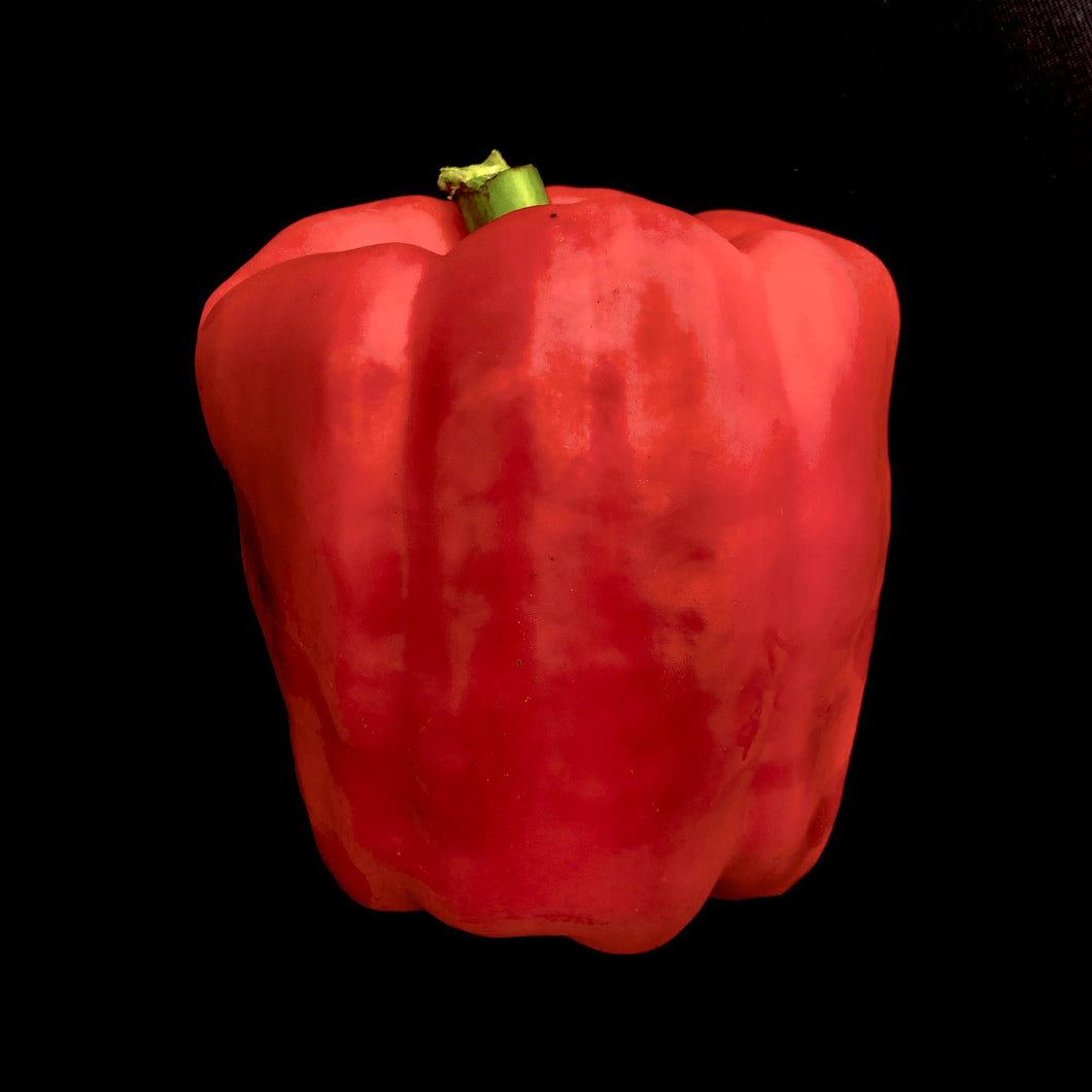 Pepper (Bell, Red)