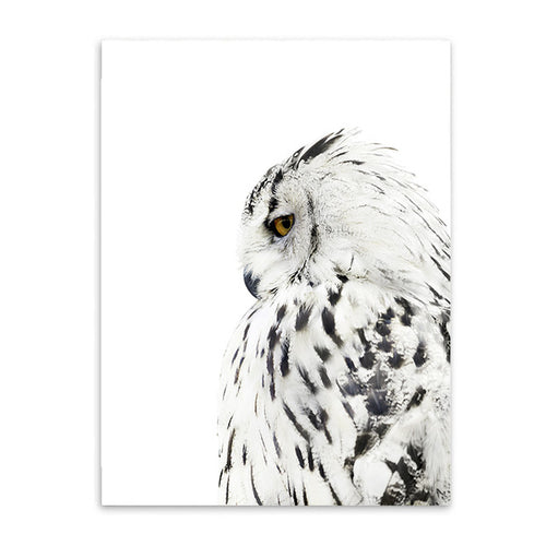 Nordic Owl Canvas Prints - tasall