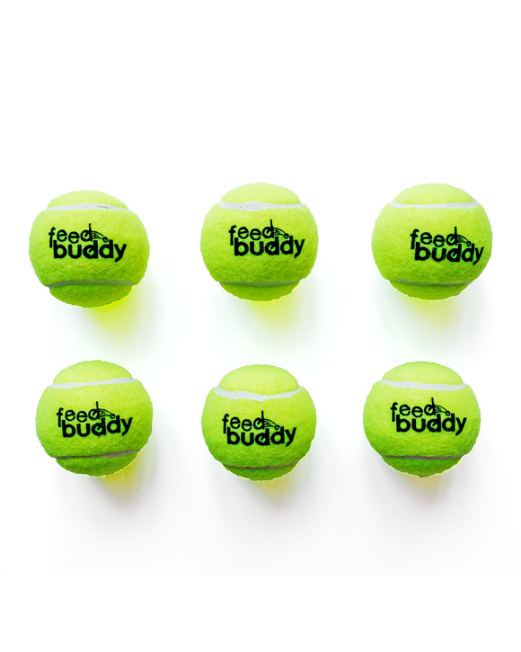 Feed Buddy Tennis Ball (Pack of 6)
