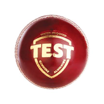 SG Test Red Ball 156 grams