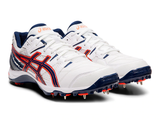 Asics Gel Gully 5 Cricket Spikes