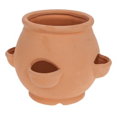 Terracotta Herb Planter - only5pounds.com