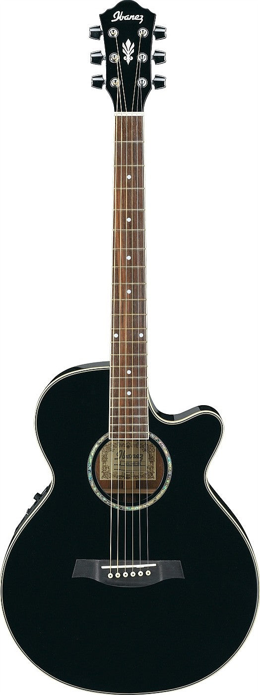 Ibanez AEG10 Nylon Acoustic/Electric