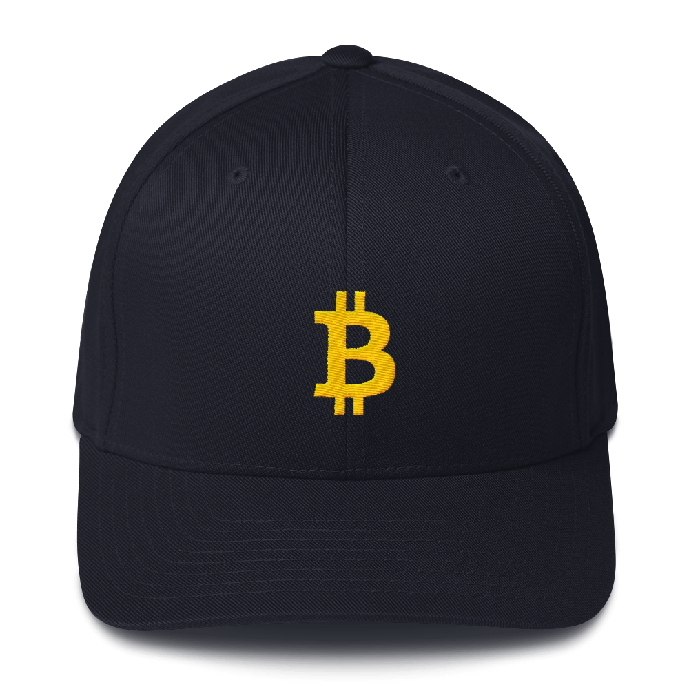 Bitcoin FlexFit hat - Human Action llc