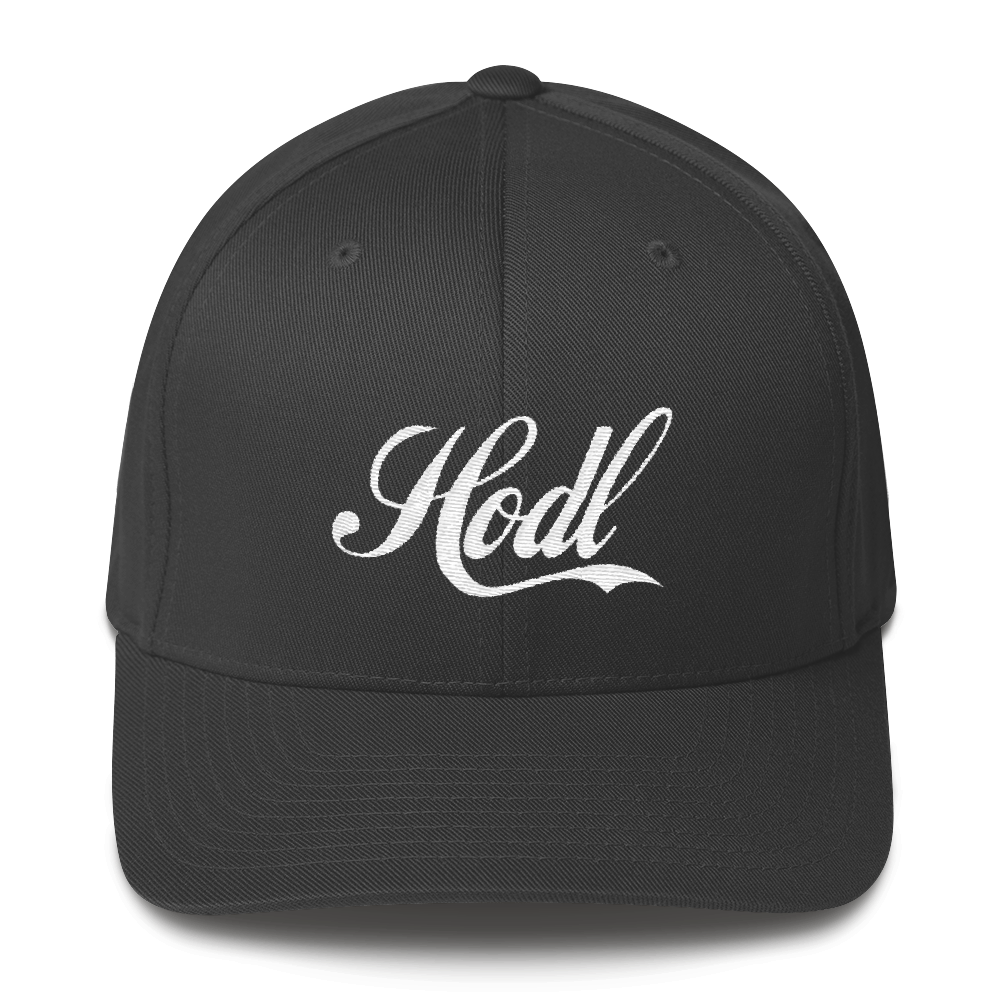 Hodl Structured Twill Cap - Human Action llc