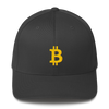 Bitcoin FlexFit hat