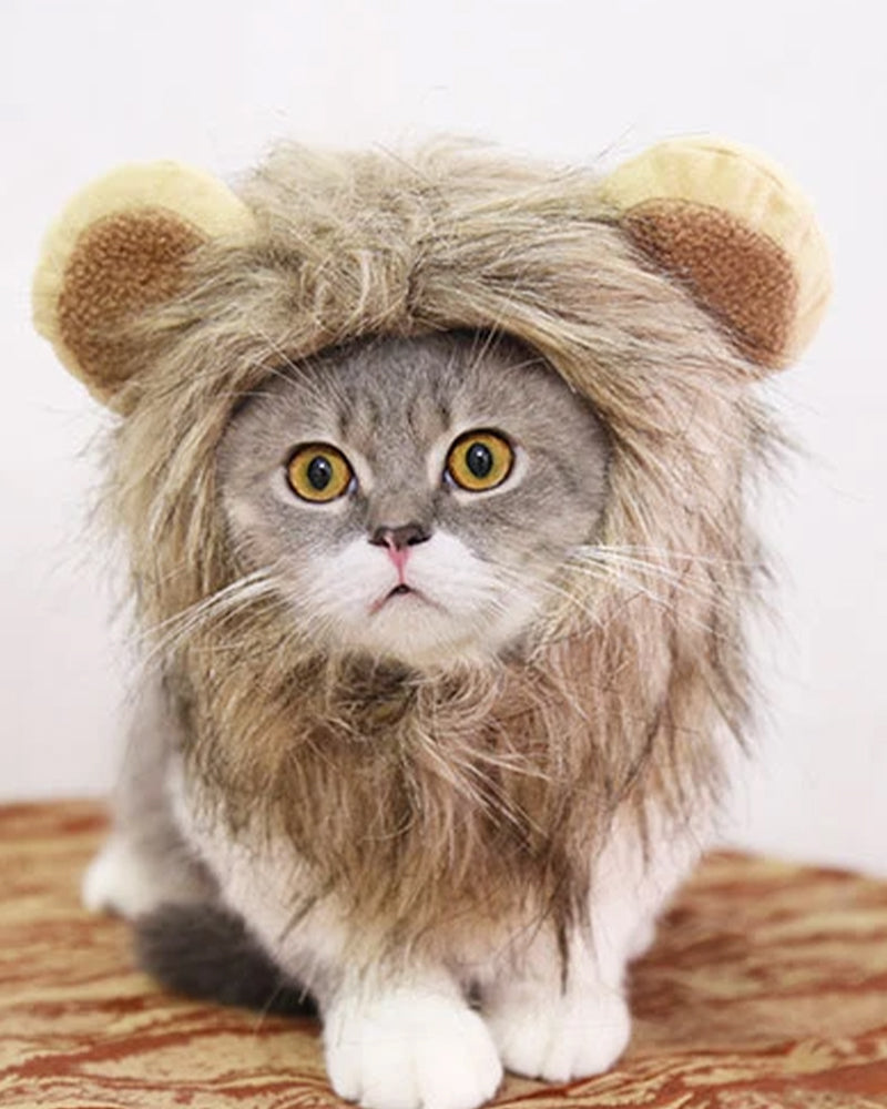Halloween Lion Design Cat Hat