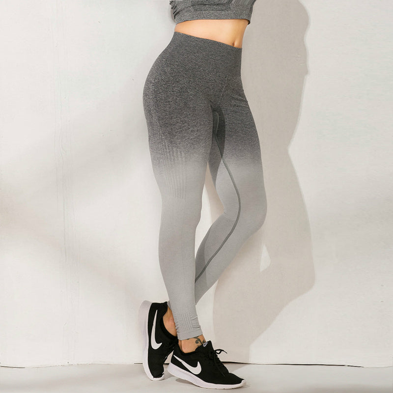 Hip Lifting Gradation Seamless Yoga Pants Legging