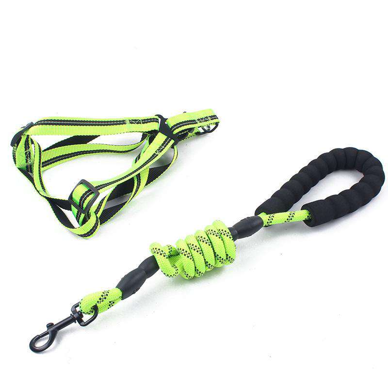 Reflective Adjustable Dog Leash & Chest Strap for Medium Sized Dogs