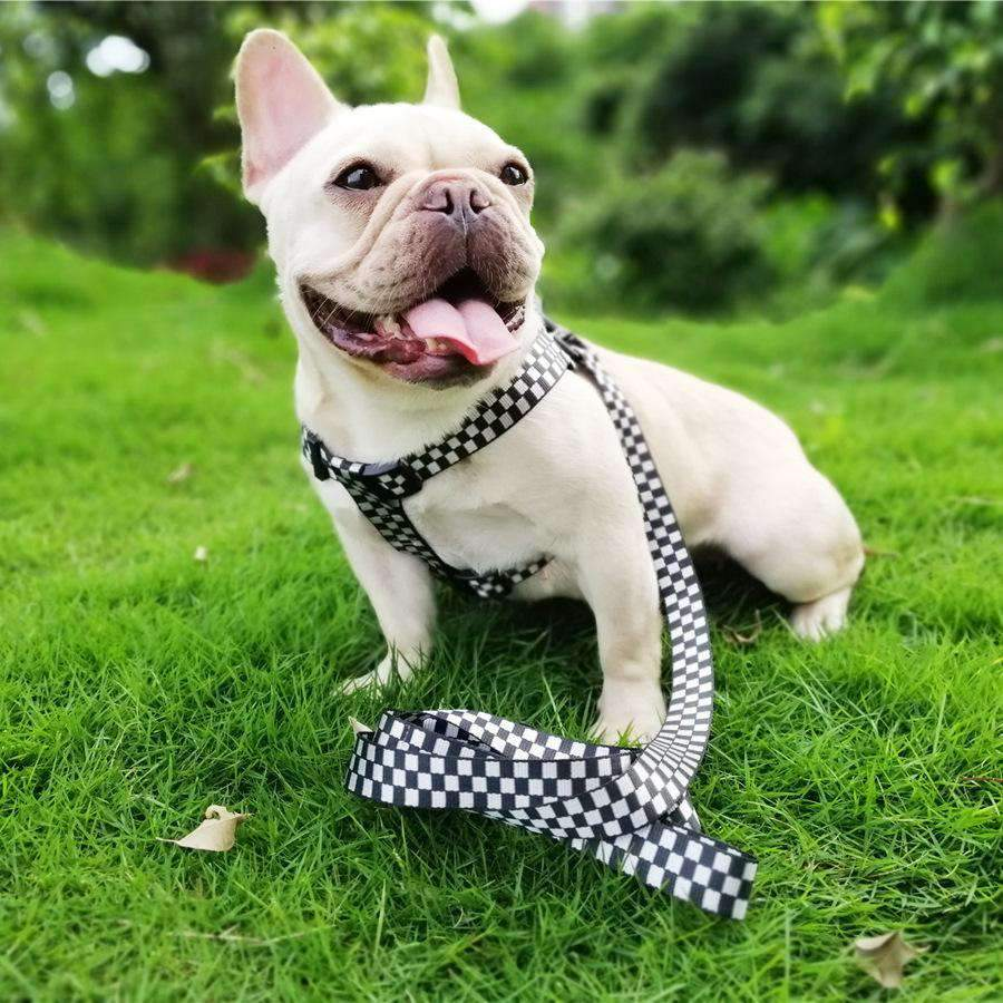 Cute Latticed Print Leash & Chest Strap For Pets