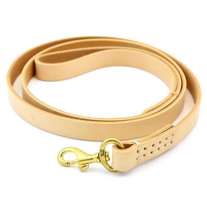 Colorful Leather Pet Collar For All Pets with Rope