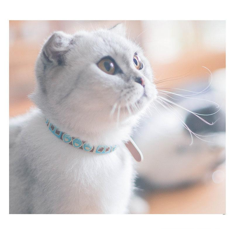 Lovely Bell Choker Cat Collar Necklace