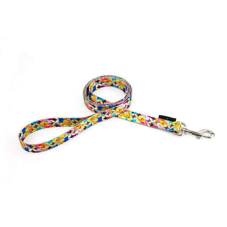 Colorful Nylon Pet Dog Leash