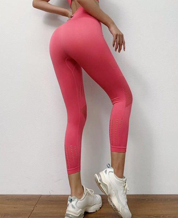 Contrast Mesh Crop Sports Leggings