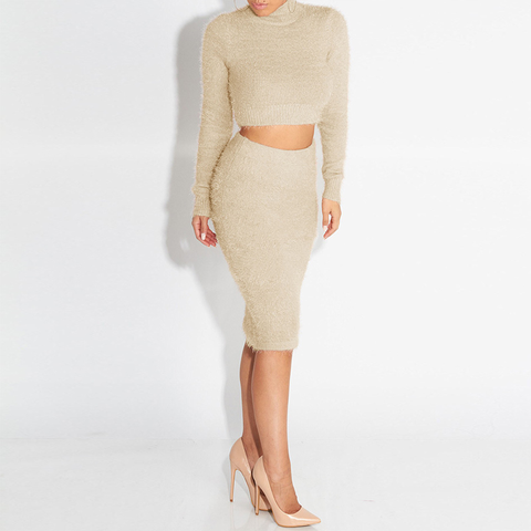Knit High Neck Cropped Top & Skirt Set