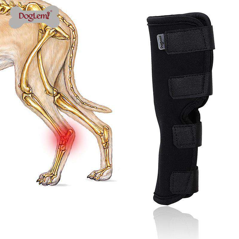 Injury Anti-lick Arthritis Fixation Restoration Dog Knee Leg Brace