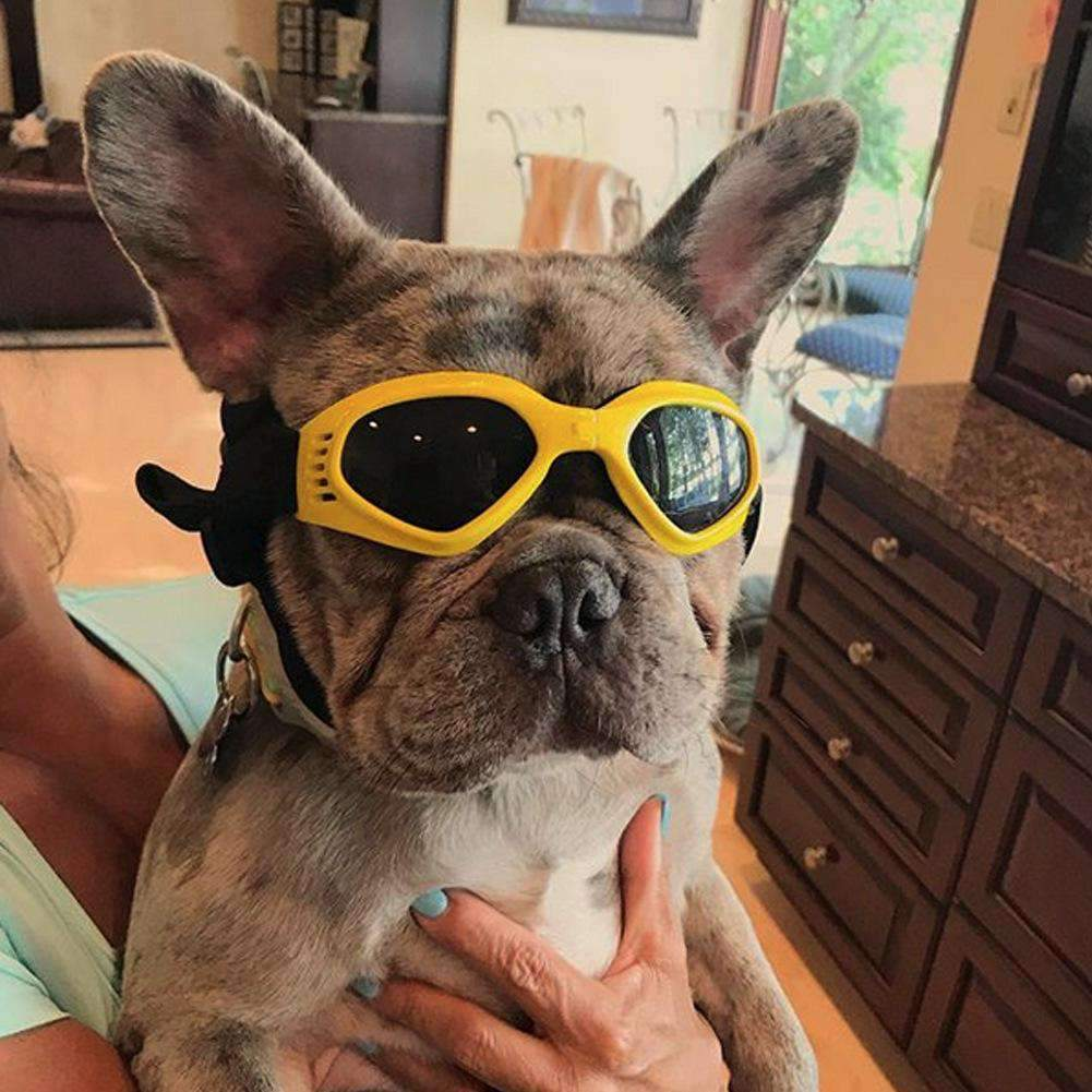 Foldable Adjustable Waterproof UV Protective Pet Goggles Sunglasses for Small& Medium Sized Pets