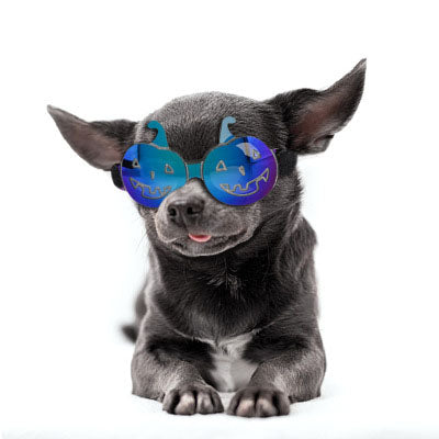 Halloween Funny Colorful Pumpkin Glasses for Small and Medium Dogs Cats