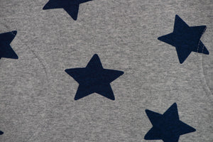 Starry Night Gray Popover