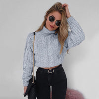 Chunky Knitted Roll Neck Cable Sleeve Sweater