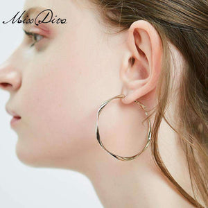 Elegant Hoop Earrings