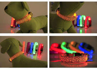 LED Pet Dog Leash Available In Many Colors