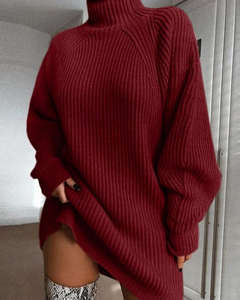 Ribbed Knit High Neck Solid Sweater Dress