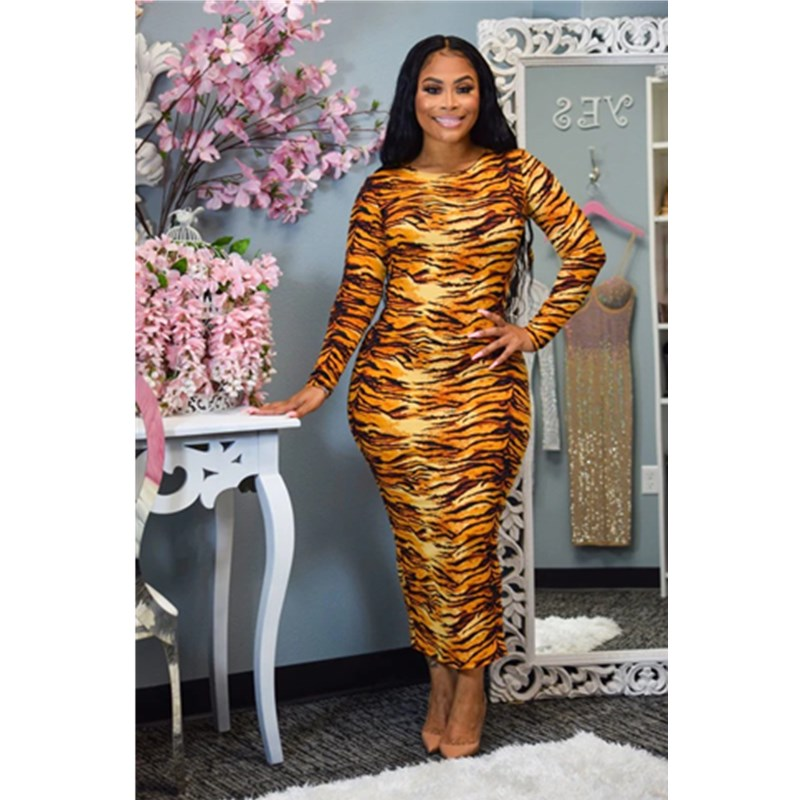 Allover Tiger Skin Print Round Neck Long Sleeve Maxi Dress