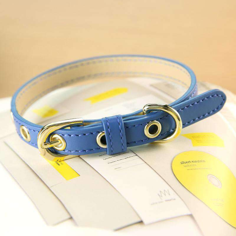 Cute Blue Print Leather Pet Collar For All Pets