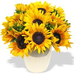 FOF Sunflower Vase