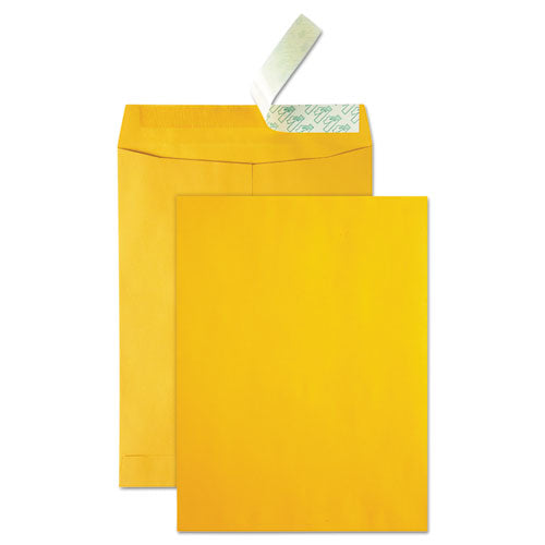 Quality Park™ High Bulk Redi-Strip™ Catalog Envelope
