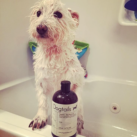 Dogtails Dog Shampoo Cooper