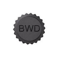 BWD Paperweight