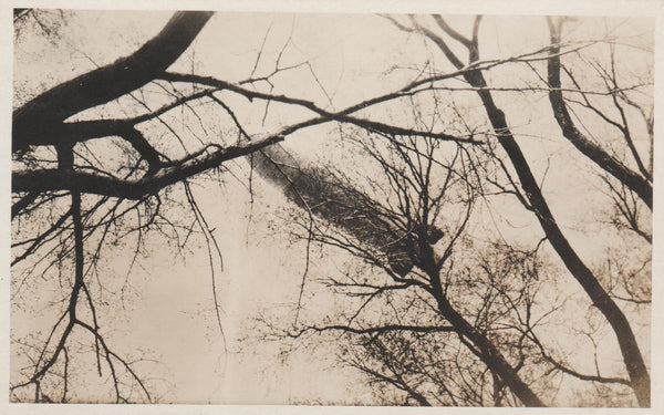 Airship Above Trees - circa 1930's
