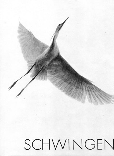 Schwingen - Photo Study of Bird and Aircraft Flight