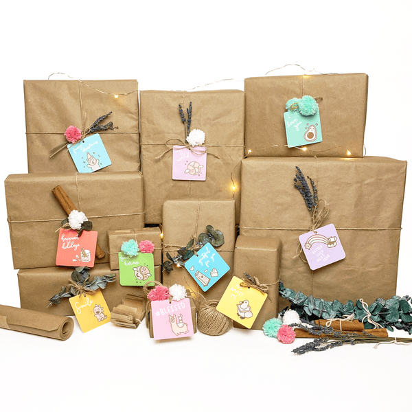 Planet Pods Gift Wrap Zero Waste Gift Kit